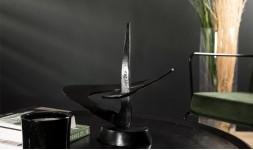 Sculpture étoile noire
