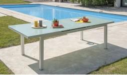 Table jardin en verre