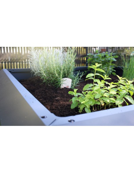 carré potager moderne orto