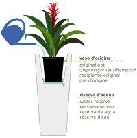 cache_pot-interieur